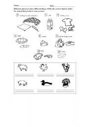 English Worksheets: animal products