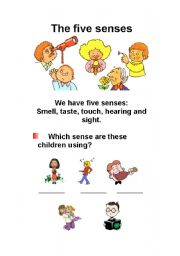 English Worksheet: The Five Senses (3 pages)