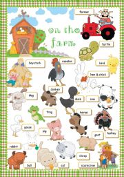English Worksheet: On The Farm