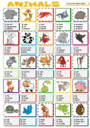 English Worksheet: Animals - multiple choice (B&W included)