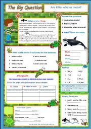 English Worksheet: Are killer whales mean? A science Question  9