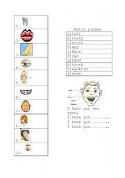 English Worksheets: parts of head