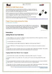 English Worksheets: USB Flash Drive