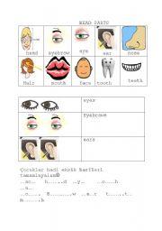 English Worksheets: HEAD PARTS