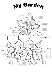 English Worksheet: My Garden- Colors