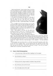 English Worksheet: Edgar Allan Poe �The Black Cat� 4