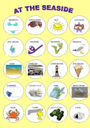 English Worksheet: AT THE SEASIDE 2 - PICTIONARY IN COLOUR