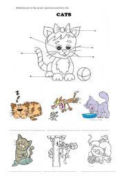 English Worksheets: animals+ likes
