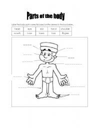 parts of the body worksheet esl worksheet by ira1231. Black Bedroom Furniture Sets. Home Design Ideas