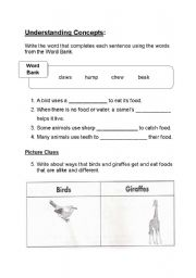 Printables Where Do Teachers Get Their Worksheets english teaching worksheets food how animals get their part2