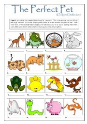 English Worksheet: The Perfect Pet