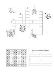 English Worksheets: Bugs - vocabulary exercises