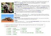English Worksheets: pangolins (unusual animal)