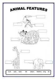 animal features esl worksheet by kela176. Black Bedroom Furniture Sets. Home Design Ideas