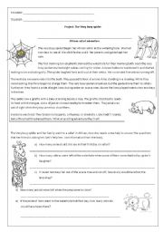 English Worksheets: the very busy spider�s safari