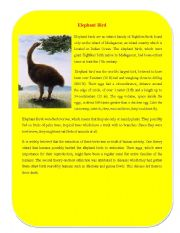 English Worksheets: Extinct Animal Part 6 ( Elephant Bird)