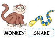 English Worksheets: SAFARI ANIMALS