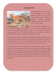 English Worksheets: Extinct Animal Part 8 ( Tasmanian Wolf)