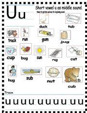 Grammar worksheets > Phonetics > Short vowels