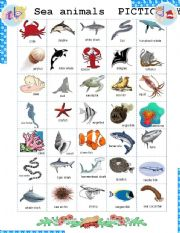 English Worksheet: Sea Animals Pictionary