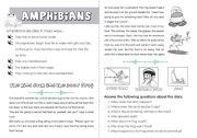 English Worksheets: Amphibians