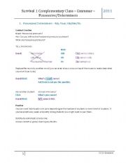 English worksheet: Possessive Determiners