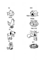 English Worksheet: Animals and Homes