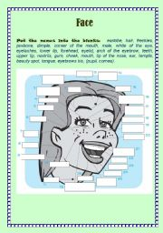 English Worksheets: Face Features (with Keys)