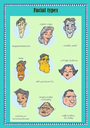 English Worksheets: Facial Types