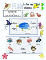 English Worksheets: Fish and other sea creatures