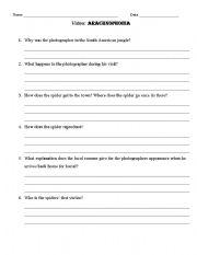 English Worksheets: Arachnophobia