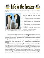 English Worksheets: Life in the Freezer