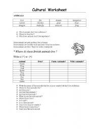 English Worksheets: cultural worksheet