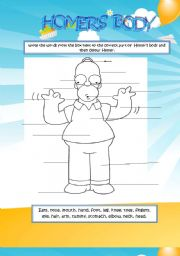 English Worksheets: HOMER�S BODY