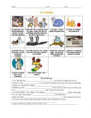 English Worksheets: Cat Idioms