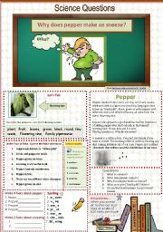 English Worksheet: Why does pepper make us sneeze? A science Question. 12