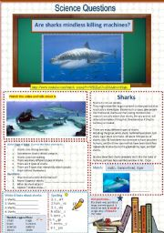 English Worksheet: Are sharks mindless killing machines?  A Science Question 13