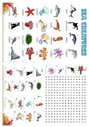 English Worksheet: SEA CREATURES