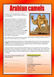 English Worksheets: Reading comprehension ( animals)