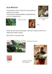English Worksheet: Bush Medicine