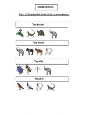 English Worksheets: types of movement