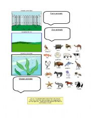 English Worksheets: animal habitats