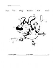 English Worksheets: Animal Body Parts