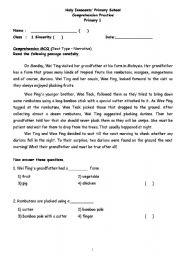 English Worksheets: Comprehension Practice 1