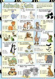 English Worksheet: Animals Quiz