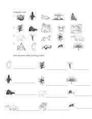 English Worksheets: Costa Rican Flora and Fauna