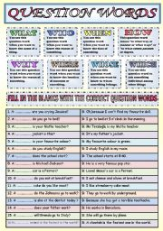 English Worksheets: QUESTION WORDS (WHAT-WHO-WHEN-WHERE-HOW-WHY-WHICH-WHOSE)