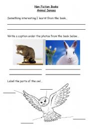 English Worksheets: Non Fiction Books