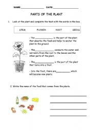 English Worksheet: Parts of the plant