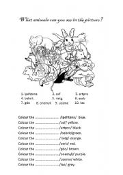 English Worksheets: A Mess in the Zoo